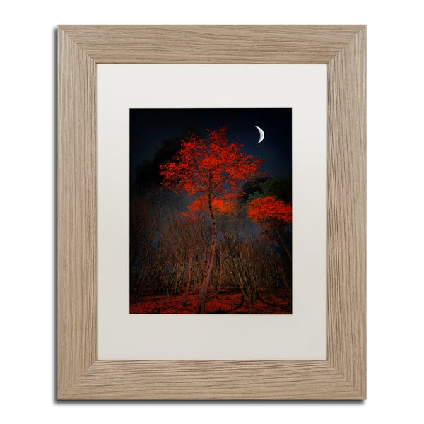 Philippe Sainte-Laudy 'The Why' Matted Framed Art