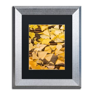 Philippe Sainte-Laudy 'Floored By The Fall' Matted Framed Art