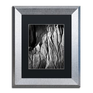 Philippe Sainte-Laudy 'Camouflage' Matted Framed Art