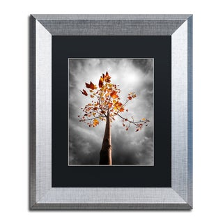 Philippe Sainte-Laudy 'Black Fall' Matted Framed Art