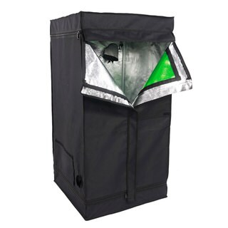 Green/Black 60 x 60 x 120-centimeter Home Use Dismountable Light-repelling Hydroponic Plant Growing Tent With Window