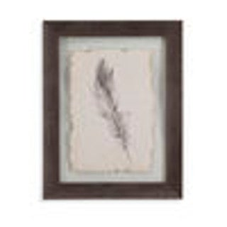 Feather Sketch IV' Framed Wall Art