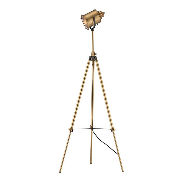 Dimond Lighting Ethan Brass Floor Lamp