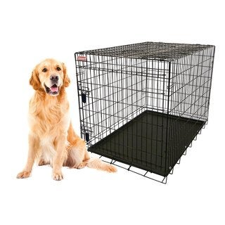 Coleman 42-inch Large Heavy-gauge Foldable Wire Pet Kennel with Removable Tray