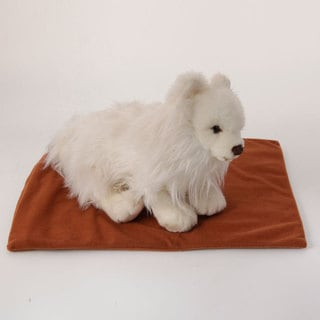 Link to Safe Heated Warmer Pet Bed Pad Similar Items in Cat Beds & Blankets