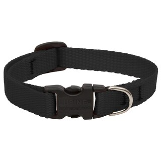 Lupine Collars & Leads Adjustable Black Collar For Small Dogs & Pupplies