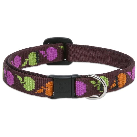 Lupine Collars & Leads Candy Apple Cat Safety Collar