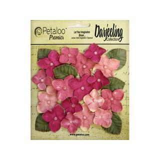 Petaloo Darjeeling Hydrangeas Pink