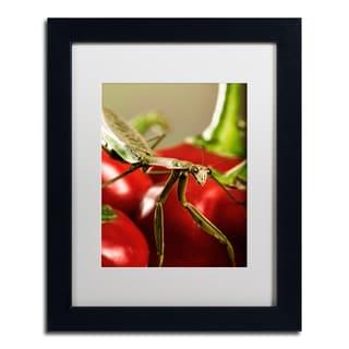 Jason Shaffer 'Praying Mantis & Pepper 2' Matted Framed Art