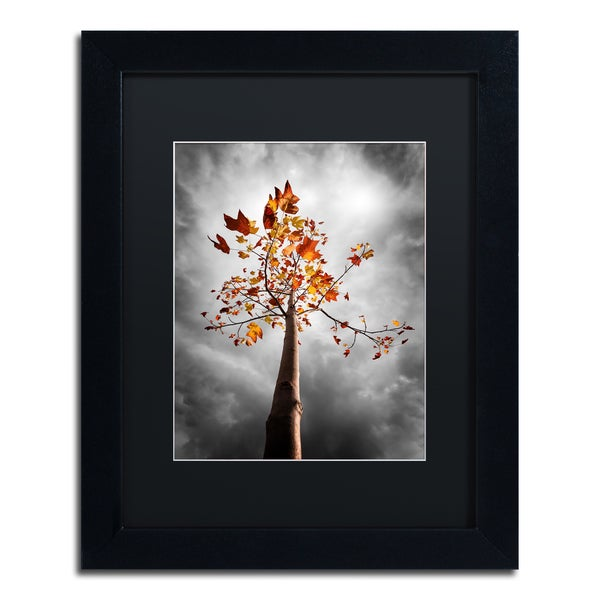 Philippe Sainte-Laudy 'Black Fall' Matted Framed Art - Grey