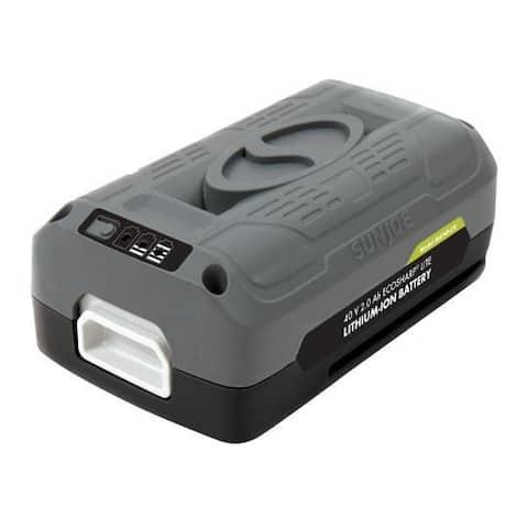Snow Joe + Sun Joe 40V 2.0-Ah EcoSharp Lithium-Ion Battery