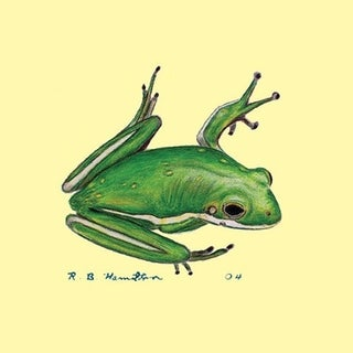 Betsy Drake Tree Frog Coaster (Set of 4)
