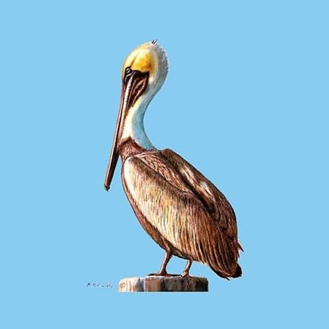 Betsy Drake Pelican Coasters (Set of 4)