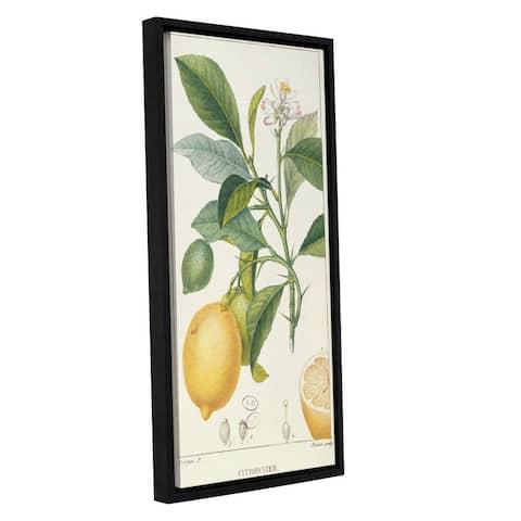 Pierre Jean Francois Pturpin's 'The Lemon Tree' Gallery Wrapped Floater-framed Canvas - multi