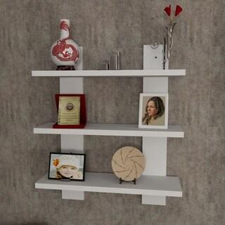 Watt 17'' x 24'' x 6'' Modern Minimalist Wall Shelf
