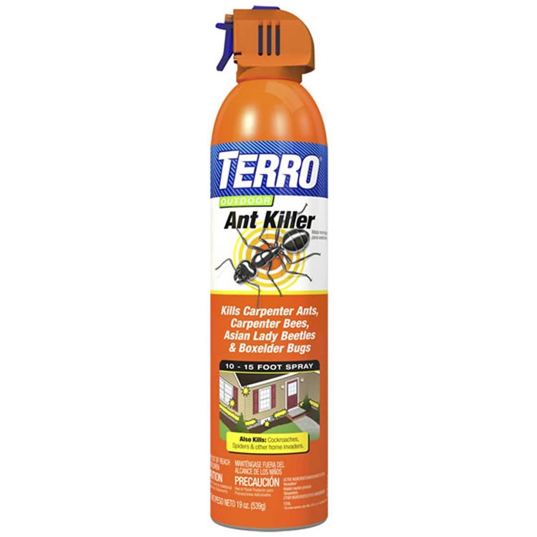 Terro Outdoor Aerosol Ant Killer (19 ounces)