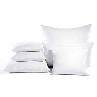 Down Alternative Euro Square Pillow (Set of 2)
