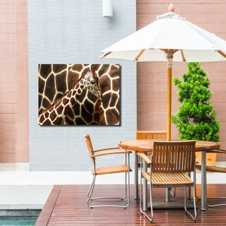 Ready2HangArt Indoor/Outdoor Wall Décor 'Giraffe' in ArtPlexi - Brown/White