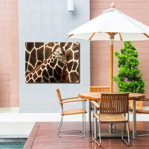 Ready2HangArt Indoor/Outdoor Wall Décor 'Giraffe' in ArtPlexi - Brown