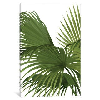iCanvas 'Another Fan Palm II' by Fab Funky Canvas Print