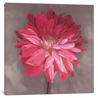 iCanvas 'Pink Zinnia' by Erin Clark Canvas Print