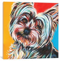 iCanvas 'Sweet Yorkie II' by Carolee Vitaletti Canvas Print