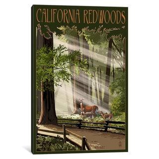iCanvas 'California Redwoods' by Lantern Press Canvas Print