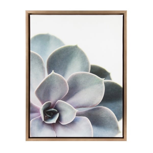 Shop Sylvie Succulent Gold Framed Canvas Wall Art by F2 Images ...