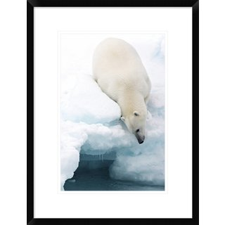 Global Gallery, Marco Gaiotti 'Arctic Composition' Framed Giclee Print