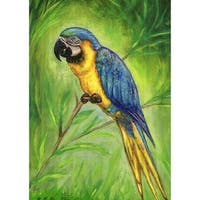 Blue Macaw Outdoor Wall Hanging 24x30