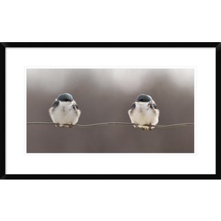 Global Gallery, Lucie Gagnon 'Birds On A Wire' Framed Giclee Print