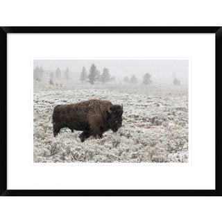 Global Gallery, Alfred Forns 'Late Fall Yellowstone' Framed Giclee Print