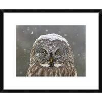 Global Gallery, Mircea Costina 'Great Grey Owl Winter Portrait' Framed Giclee Print