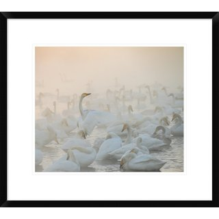 Global Gallery, Dmitry Dubikovskiy 'Song Of The Morning Light' Framed Giclee Print