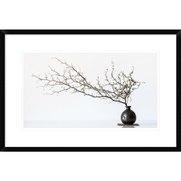 Global Gallery, Prbimages 'Vase And Branch' Framed Giclee Print