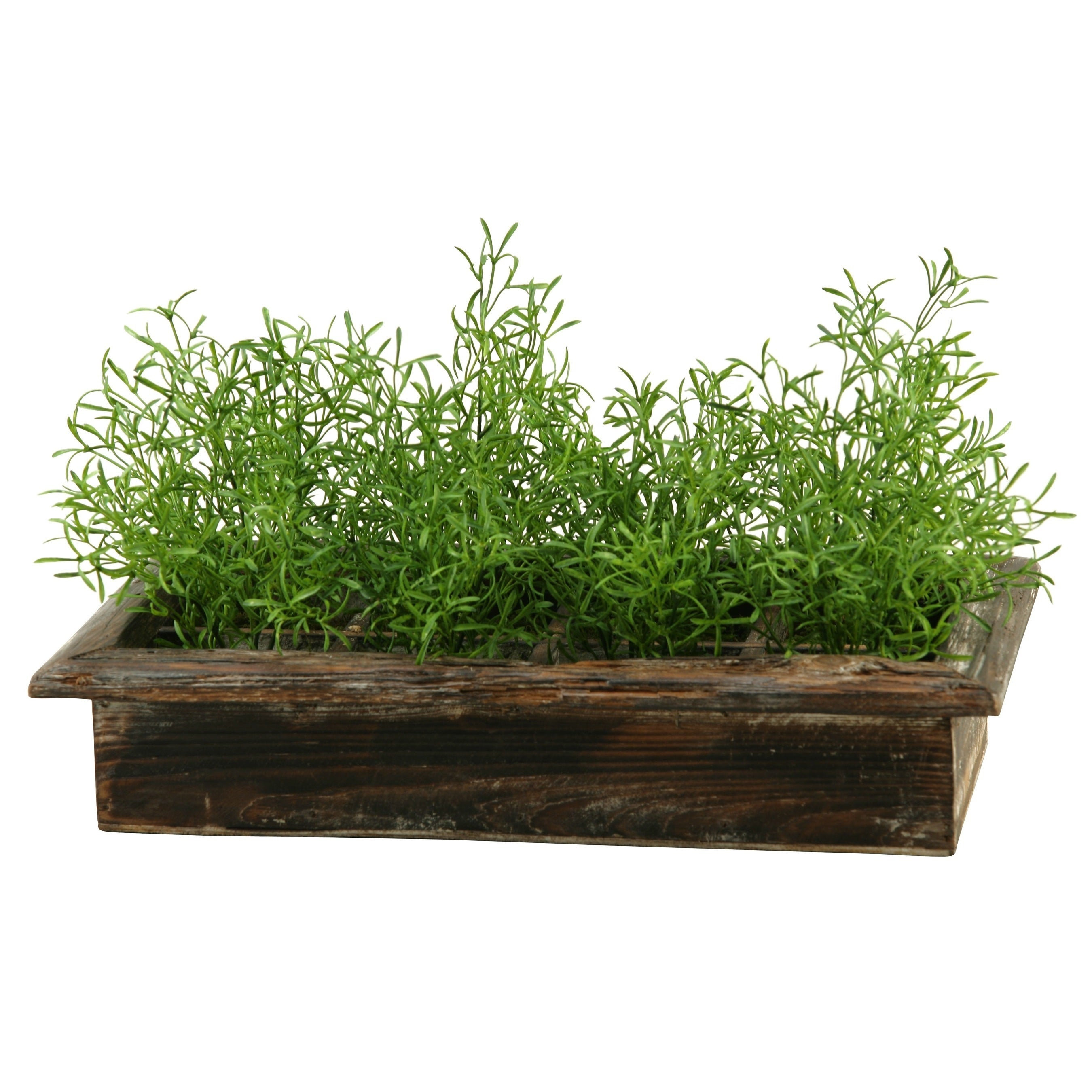 D&W Silks Wild Asparagus in Rectangle Wood Planter Box (Planter)