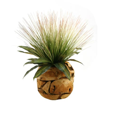D&W Silks Tall Onion Grass and Dracaena Leaves in Wooden Root Ball