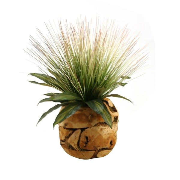 D&W Silks Tall Onion Grass and Dracaena Leaves in Wooden Root Ball. Opens flyout.