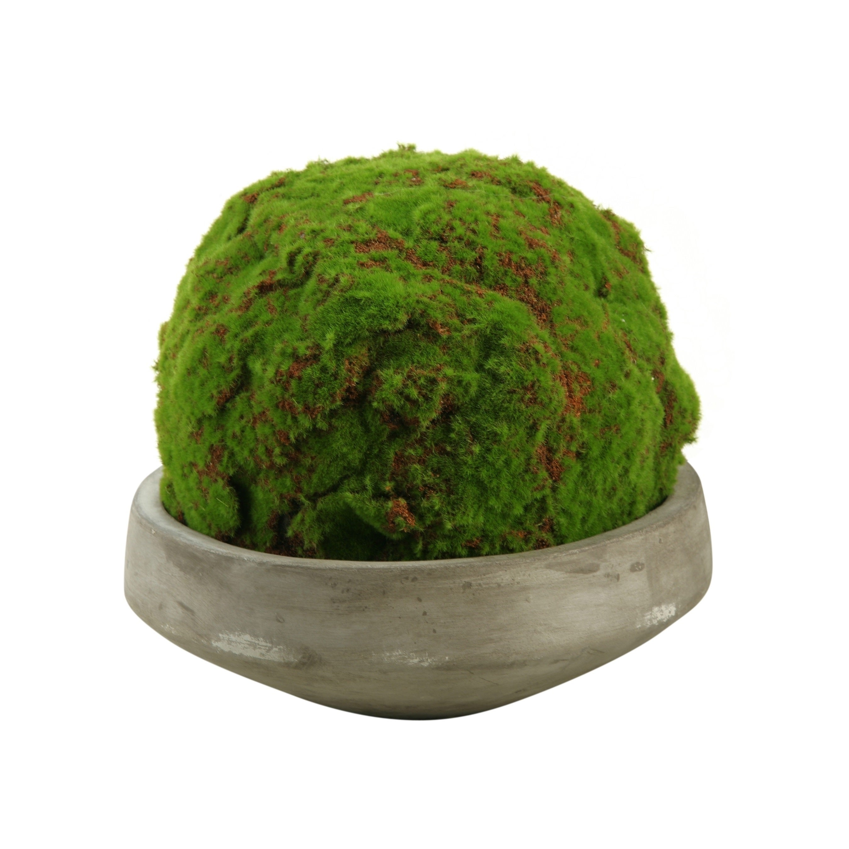 D&W Silks Large Moss (Green) Ball in Round Concrete Bowl ...