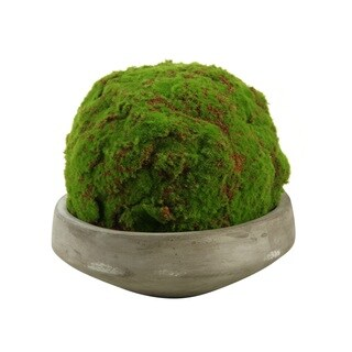 D&W Silks Large Moss Ball in Round Concrete Bowl