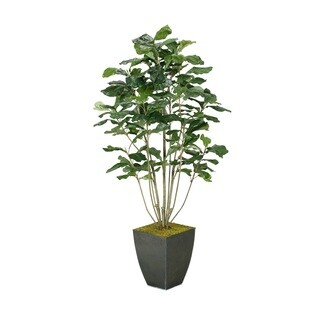 D&W Silks Fiddle Leaf Fig Plant in Square Metal Planter