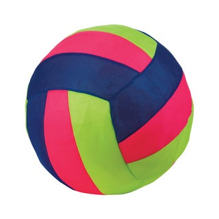 Toysmith Volleyball Hav-A-Ball (Assorted Colors)