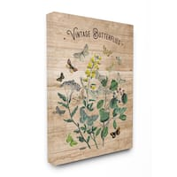 Vintage Butterflies Illustration Stretched Canvas Wall Art