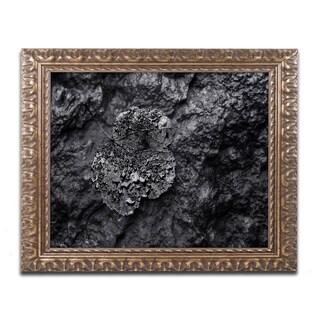 Mathieu Rivrin 'Pearls of Nature' Ornate Framed Art