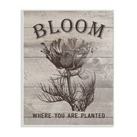 Bloom Where You're Planted Vintage Flower Line Drawing Wall Plaque Art