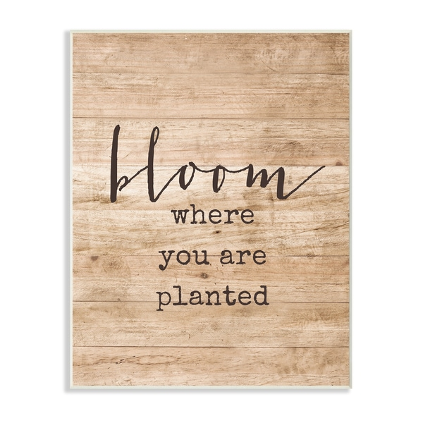 Bloom Where You're Planted Wall Plaque Art