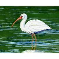 Betsy Drake Multicolor Dick's White Ibis Doormat (30 x 50)