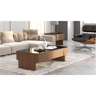 Walrus Wood and Glass Coffee Table