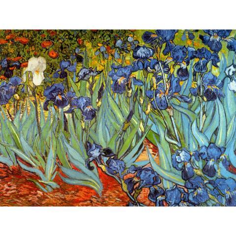 Handmade Van Gogh Irises Wall Art