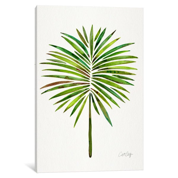 iCanvas 'Fan Palm I' by Cat Coquillette Canvas Print